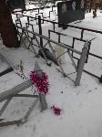 Кто устроил беспредел на кладбище Горняк, Фото: 11