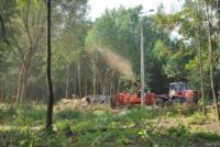 В Туле проводят работы по благоустройству зон отдыха. 26 июля 2014 год, Фото: 11
