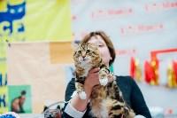 """Выставка """"Пряничные кошки"""" в ТРЦ """"Макси"""", Фото: 48"""