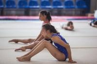 Тульские гимнастки готовятся к первенству России, Фото: 34