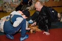 Выставка собак DogLand, Фото: 29