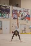 Первенство ЦФО по спортивной гимнастике, Фото: 201