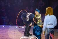 Шоу фонтанов «13 месяцев» в Тульском цирке – подарите себе и близким путевку в сказку!, Фото: 16