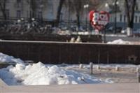 Улицы Тулы, 28 февраля 2014, Фото: 6