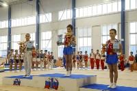 Спортивная гимнастика в Туле 3.12, Фото: 50