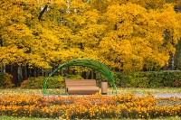 Золотая осень в Туле-2019, Фото: 5