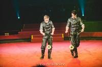 Братья Калашниковы на международном цирковом фестивале в Риме, Фото: 3