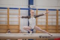 Первенство ЦФО по спортивной гимнастике, Фото: 158