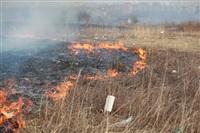 """Возгорание сухой травы напротив ТЦ """"Метро"""", 7.04.2014, Фото: 17"""