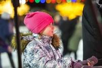 В Туле завершились новогодние гуляния, Фото: 20