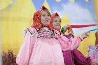 Алексей Дюмин посетил Епифанскую ярмарку, Фото: 16