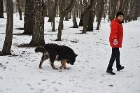 В Центральном парке прошёл рейд по выявлению нарушений выгула собак, Фото: 14