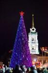 Главную ёлку Тулы открыли грандиозным фейерверком, Фото: 50