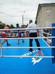 Турнир по боксу в Алексине, Фото: 13