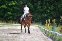 В Ясной поляне стартовал турнир по конному спорту, Фото: 95