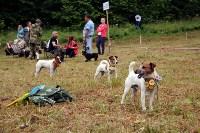 Выставка охотничьих собак под Тулой, Фото: 24