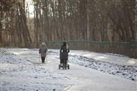 Центральный парк культуры и отдыха им. Белоусова. Декабрь 2013, Фото: 8