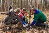Посадка деревье в Ясной Поляне. 17.04.2015, Фото: 36