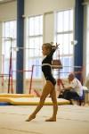Спортивная гимнастика в Туле 3.12, Фото: 85