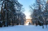 Снежное Поленово, Фото: 33