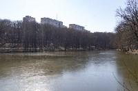 Солнечный день в Белоусовском парке, Фото: 15