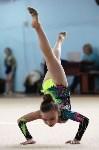 Соревнования «Первые шаги в художественной гимнастике», Фото: 38