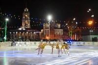 Туляки отметили Старый Новый год ледовым шоу, Фото: 31
