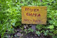 Кладбище домашних животных в Туле, Фото: 26