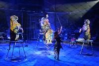 Цирковое шоу, Фото: 133