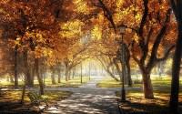 Куда поехать этой осенью?, Фото: 12