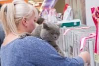 Выставка кошек в Туле, Фото: 61
