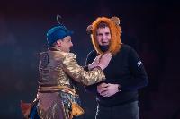 Шоу фонтанов «13 месяцев»: успей увидеть уникальную программу в Тульском цирке, Фото: 33