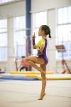 Спортивная гимнастика в Туле 3.12, Фото: 113