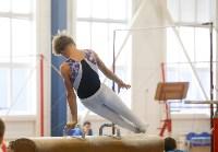 Спортивная гимнастика в Туле 3.12, Фото: 9