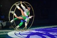 Цирковое шоу, Фото: 86