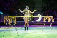"""""""Тайна пирата"""" в Тульском цирке, Фото: 21"""