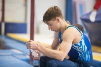 Тульский гимнаст Иван Шестаков, Фото: 9