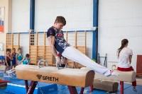 Мужская спортивная гимнастика в Туле, Фото: 31
