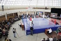 Чемпионат РФСО «Локомотив» по боксу, Фото: 12