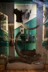 Тульский областной краеведческий музей, Фото: 10