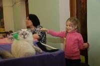 Выставка кошек. 21.12.2014, Фото: 36