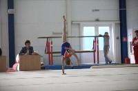 Соревнования по спортивной гимнастике на призы Заслуженных мастеров спорта , Фото: 59