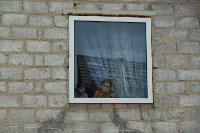 В Плеханово начали сносить дома в цыганском таборе, Фото: 67