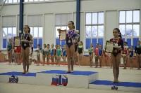 В Туле проверили ближайший резерв российской гимнастики, Фото: 26