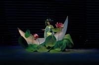 Музыкальный спектакль «Волшебные сады Шеньяна», Фото: 1