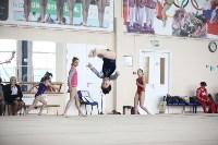 Соревнования по спортивной гимнастике на призы Заслуженных мастеров спорта , Фото: 38