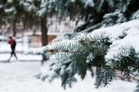Мартовский снег в Туле, Фото: 104