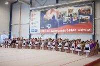 Первенство ЦФО по спортивной гимнастике, Фото: 1
