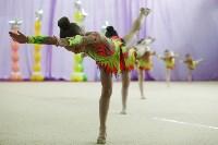 Соревнования «Первые шаги в художественной гимнастике», Фото: 67