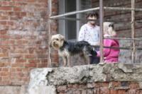 Восстановление домов в селе Воскресенское после урагана. 2.07.2014, Фото: 20